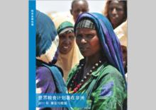 世界粮食计划署在非洲2011